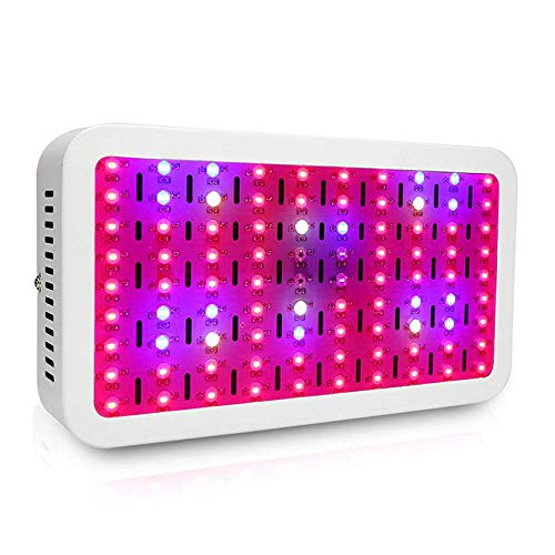 Inicio Equipos Lámpara de crecimiento de plantas 900W Double Chips LED Grow Light Lámpara de cultivo de espectro completo con suspensión de cuerda para plantas hidropónicas de invernadero de interi