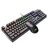 HAVITメカニカル ゲーミングキーボード マウスセット、104キー虹色バックライト付きUSBキーボード 青軸 PCゲーマー コンピュータ ラップトップ用 有線4800DPI 7ボタンマウス KB393L
