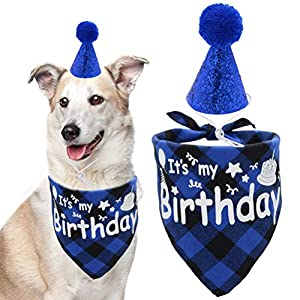 Dog Birthday Bandana Scarf with Cute Hat Pet Party Supplies Boy and Girl for Small Medium Large Dogs