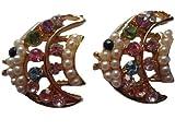 1 Paar Ohrringe Ohrstecker Stecker Fisch Fische Diskuss Tier Straß Straßstein *208*