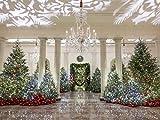 White House Christmas 2020