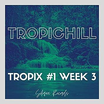 Tropix #1 Week 3
