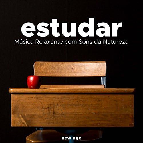 Memoria Linda & Musica Para Estudiar Academy