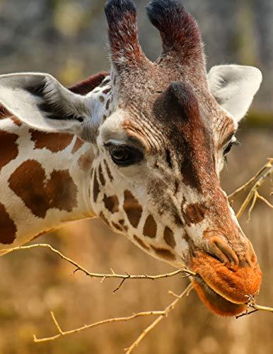 Notebook: Giraffe Zoo Animal Portrait Wild Planet Zoology Wildlife African Safari Conservation