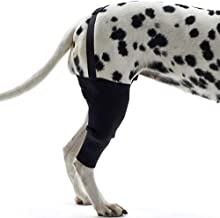 PLAFUETO Dog Knee Support Sleeve Dog Leg Brace Rear Dog Hock Support Heals Hock Joint Wrap Sleeve for Hind Leg - Pet Brace Heals and Prevent Injuries, Wound Healing, Loss of Stability from Arthritis