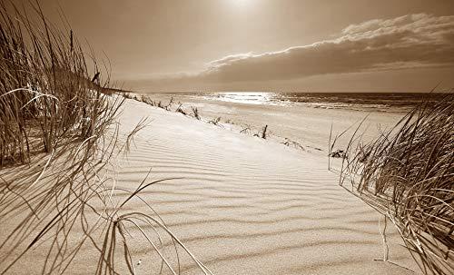 Querfarben Bild auf Leinwand mit Landschaftsmotiv Stranddünen auf der Insel   135 x 80 cm, Sepia, Wandbild, Leinwandbild mit Kunstdruck, Nordseebild mit Strandmotiv auf Holzrahmen gespannt, 80x135 cm