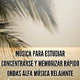Música para Estudiar Concentrarse y Memorizar Rápido Ondas Alfa Música Relajante