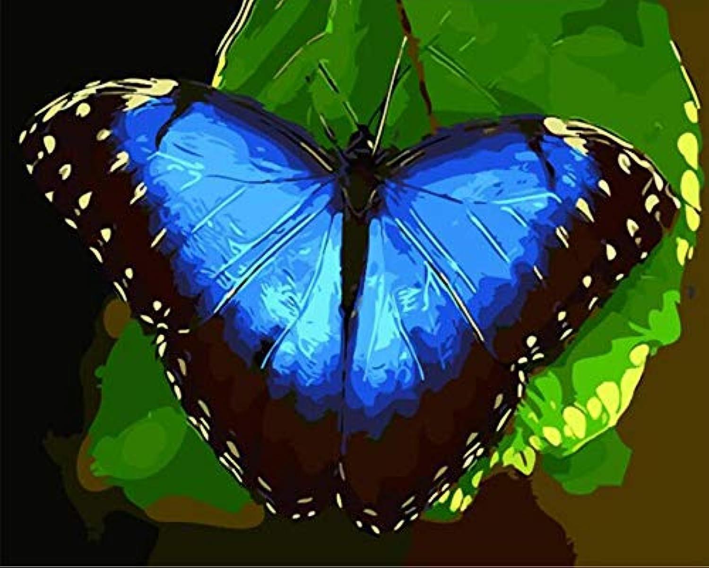 Agolong Schmetterling Diy Malen Nach Nach Nach Zahlen Tiere Moderne