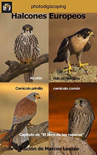 Halcones Europeos: Los 4 falcónidos ibéricos. (El libro de las rapaces nº 6)