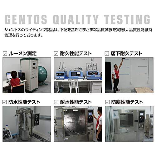 GENTOS(ジェントス)『モーションセンサー搭載ヘッドライトCB-300D』