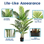 diiger-artificial-tree-55-faux-paradise-palm-tree-conifer-plant-modern-large-fake-plant-decor-in-pot-for-indoor-outdoorhome-office-perfect-housewares-gift-decoration