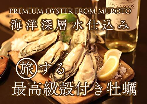 室戸海洋深層水仕込 殻付き牡蠣 プレミアムオイスター 最高級牡蠣 旅する牡蠣 生食用12〜15個入