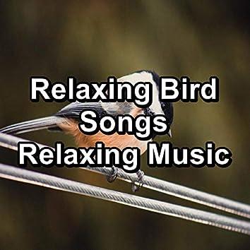 Relaxing Bird Songs Relaxing Music