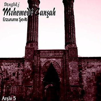 Erzuruma Şeviti Arşiv, Vol. 5