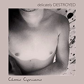 Delicately Destroyed - Single