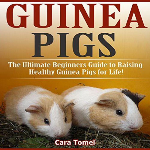 Guinea Pigs: The Ultimate Beginner's Guide to Raising Healthy Guinea Pigs for Life! audiobook cover art