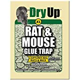 HARRIS FAMOUS ROACH TABLETS Dry Up Mouse and Rat Glue Trap, Extra Large