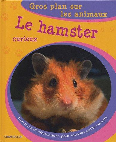 Gros plan sur les animaux 04. Le hamster curieux