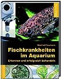 Fischkrankheiten im Aquarium: Erkennen und erfolgreich behandeln