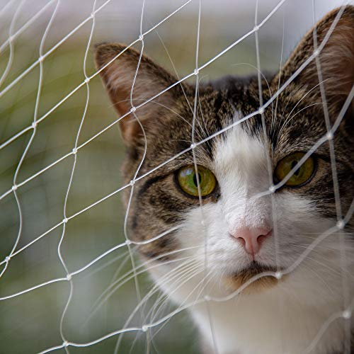 Pet Prime Red de seguridad para gatos para el balcón exterior, escalera, puerta de ventana, advertencia de seguridad para mascotas, tamaño invisible (XS de 2 x 1,5 m)