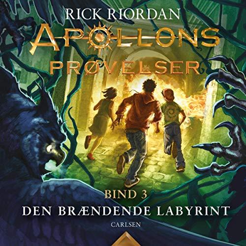 Den brændende labyrint cover art