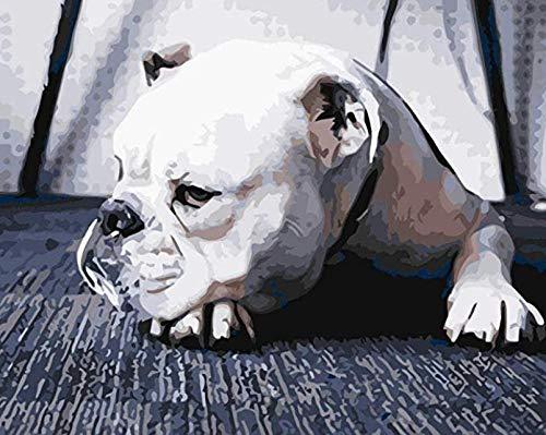 Cama para Mascotas, con una Alfombra Suave para Mascotas, Cama para Gatos Perros, Cama Suave de Felpa de tamaño Mediano -Rosa_XL-110 * 75