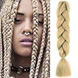 1PCS 60cm Extensiones para Trenzas Africanas 100g Extensiones de Pelo Sintético para Hacer Trenzado Cabello Kanekalon Jumbo Braid Crochet Twist Braiding (Rubio oscuro)