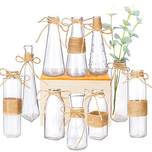 Nilos Glass Vases Set of 10, Clear Glass Flower Vase with Rope Design and Differing Unique Shapes...