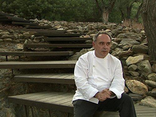 Folge 7 (2003-2005)