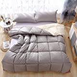 Gasgff EXTRA WARM Bettwäsche Wendebett Leichte Daunendecke Weiche Daunendecke Alternative All Seasons Duvet Insert with-Grau_220 x 240 cm daunendecke 135x215 Winter Bio