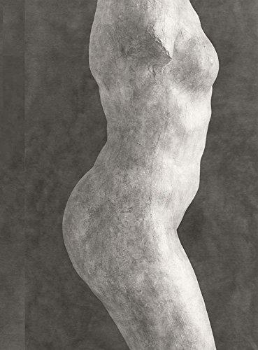 Rodin: Photographs by Emmanuel Berry (Beaux livres)