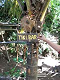 Tikimaster Tiki BAR Wind Chime - 40' Bamboo - Tropical Relaxation