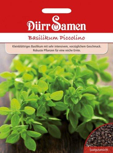 Dürr-Samen Basilikum Piccolino