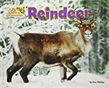 non-fiction books about reindeer