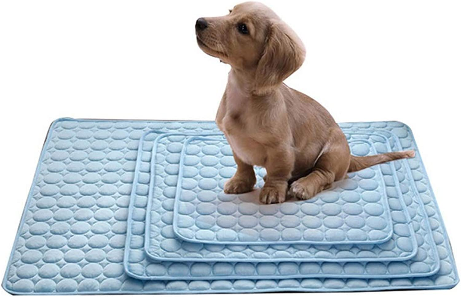 Dog Mat Four Seasons Pet Nest Suede Teddy Kennel Cat Mat golden Retriever Large, Medium And Small Dog Bed Dog Supplies (color   bluee, Size   Xl)
