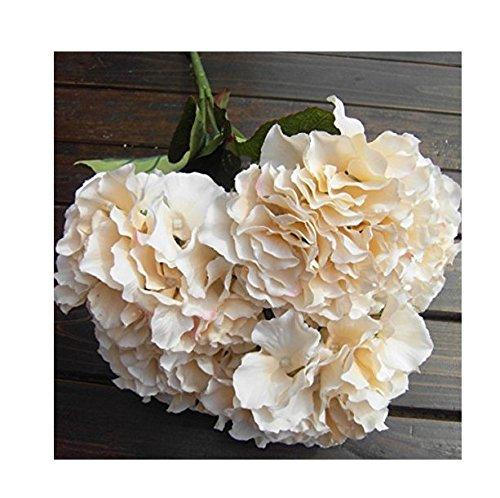 Caomoa flor artificial de hortensia, 5ramos de grandes flores, 7colores disponibles, flor de imitación., champán, 5 head