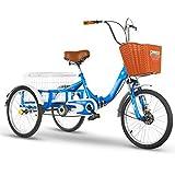 ZCXBHD - Bicicletta pieghevole a 3 ruote da 20', 3 ruote, per adulti e anziani, 3 ruote, triciclo con cestino per la spesa, per adulti e persone anziane (colore: blu)