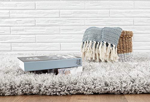 the carpet Velvet Langflor, Hochflor Teppich, Luxuriöse Felloptik, Kuschelig Weich, Einfarbig Silber 120 x 160 cm