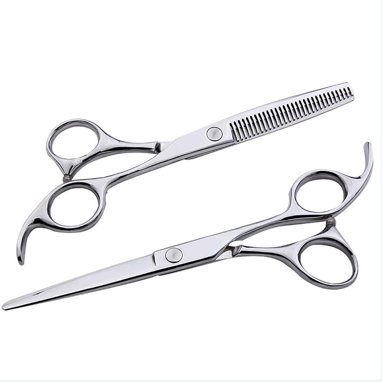 食物通行料金腰6インチ美容院プロフェッショナル理髪セット、フラット+歯シザー家族理髪ツールセット モデリングツール (色 : Silver)