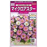 サカタのタネ 実咲花5047 マイクロアスター ステラ トップローズ 00905047