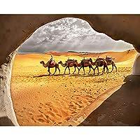 ダイヤモンド絵画キット 大人 子供用 砂漠のラクダ、動物 ラインストーンクリスタルの刺繍キットアート工芸品&ソーイングクロスステッチ 30x40cm