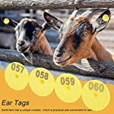 HAOX Etiquetas numeradas, Etiquetas numéricas Que no destiñen, TPU 100pcs / Set para la cría de poblaciones de Cabras, prevención o Control de epidemias, ovejas, Cerdos,(with Words)