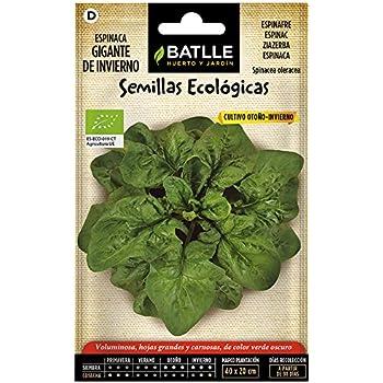 Semillas Hortícolas Híbridas - Espinaca Lagos F-1 - Batlle: Amazon ...