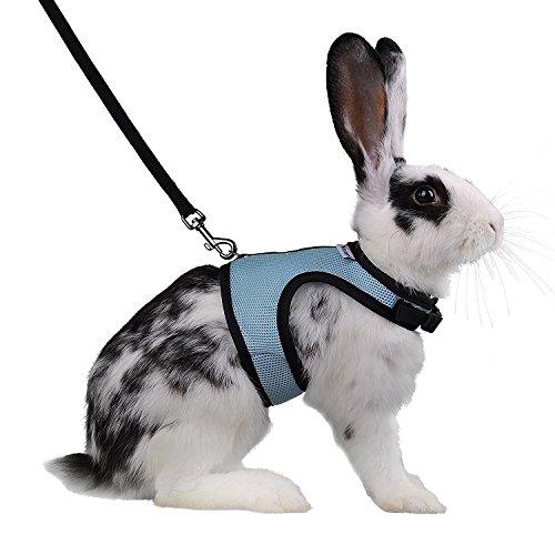 Niteangel verstellbar Softgeschirr mit Elastic Leine für Kaninchen, XL, blau