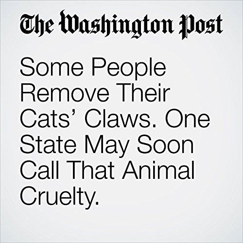 Some People Remove Their Cats' Claws. One State May Soon Call That Animal Cruelty. copertina