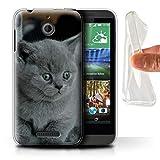 Handy Hülle kompatibel mit HTC Desire 510 Süß Baby Tier Fotos Graues Kätzchen Katze Transparent Klar Ultra Sanft Flexibel Silikon Gel/TPU Hülle Cover