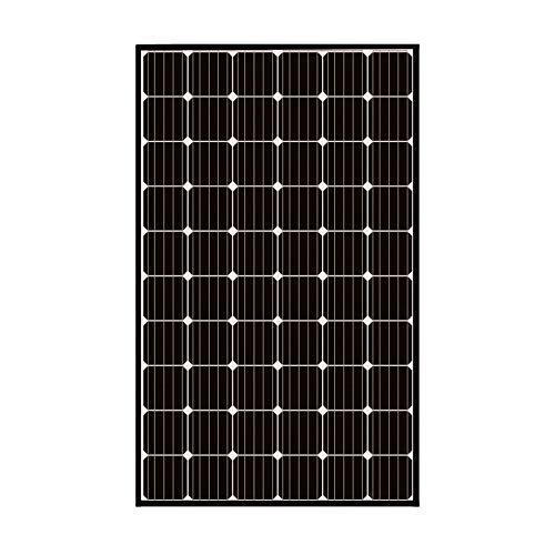 ReneSola Mono 320W Monokristallin Solarpanel Solarmodul schwarzes Rahmen ideal für Wohnmobil, Gartenhäuse, Boot (Mono 320W)