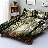 Juego de funda nórdica, ruta del bosque oscuro rodeado de niebla en el día del sol en la imagen de la madre tierra Juego de cama decorativo de 3 piezas con 2 fundas de almohada, verde marrón, el mejor