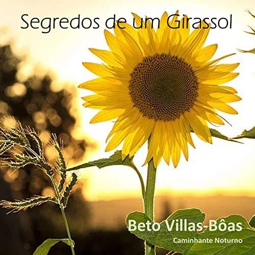Sexo Das Algemas (feat. Paulo Rocco)