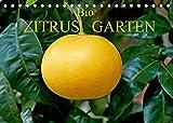 Bio Zitrus Garten (Tischkalender 2022 DIN A5 quer)
